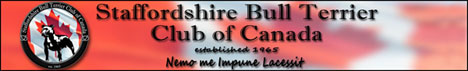 клуб породы стаффордширский бультерьер Канады