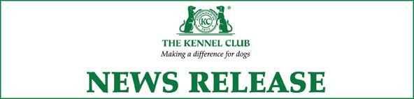 Окрас Стаффордширского бультерьера, Kennel Club