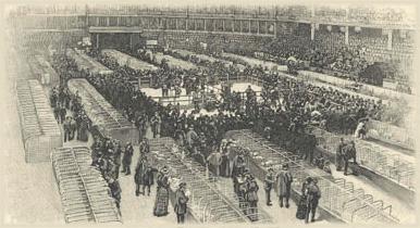 Ринги 1877