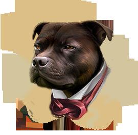 Вельшкорги собака фото купить видео цена